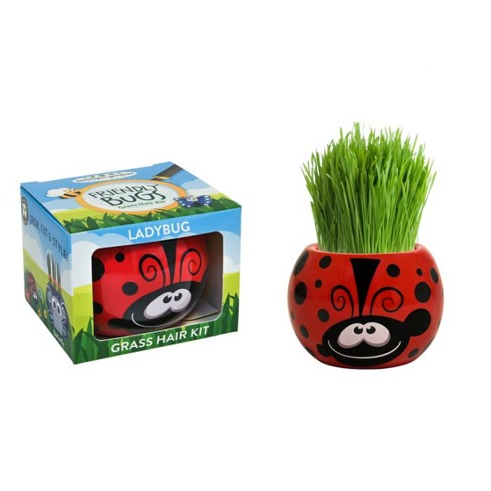Grass Hair Kit Bugs - Ladybug  ] 9324190097758 - Flower Power