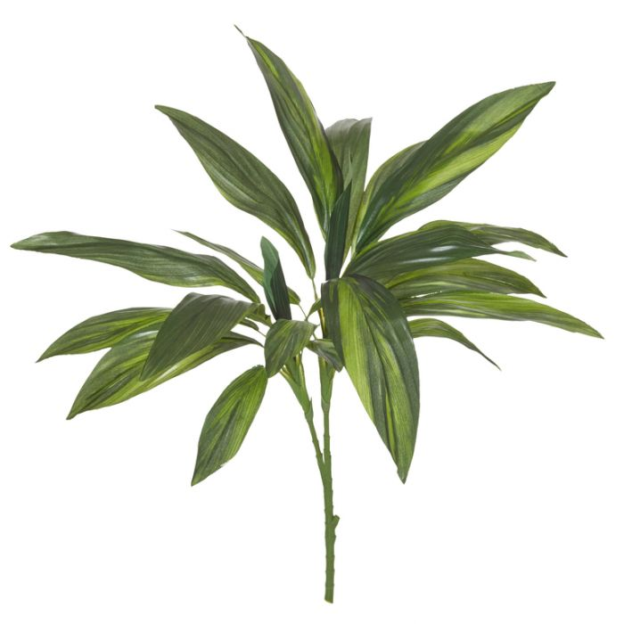Artificial Branch Cordyline Leaves  ] 9331460071349 - Flower Power