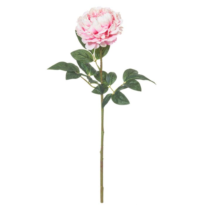 Artificial Stem Peony Pink  ] 9331460277185 - Flower Power