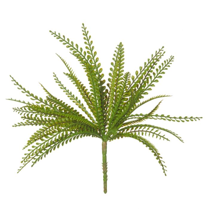 Artificial Fern Baby Jewel  ] 9331460277536 - Flower Power