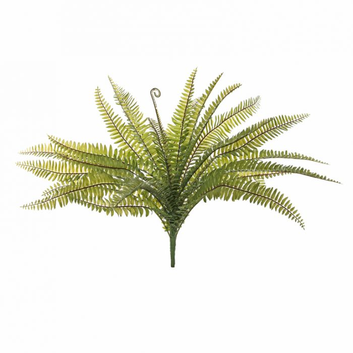 Artificial Fern Boston  ] 9331460278755 - Flower Power