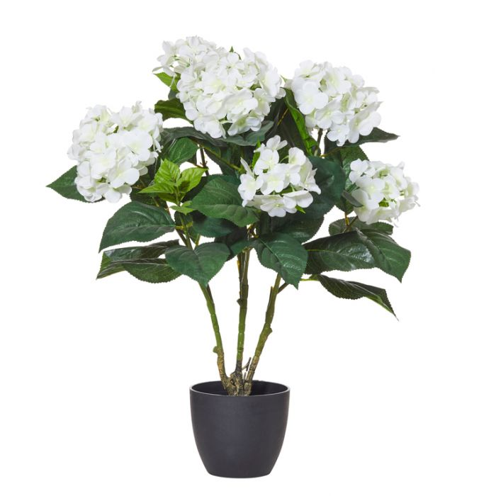 Artificial Hydrangea Bush Pot  ] 9331460287979 - Flower Power