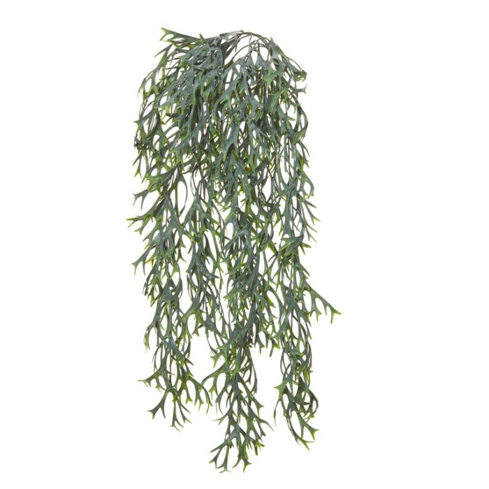 Artificial Fern Elk Hanging Bush  ] 9331460288211 - Flower Power