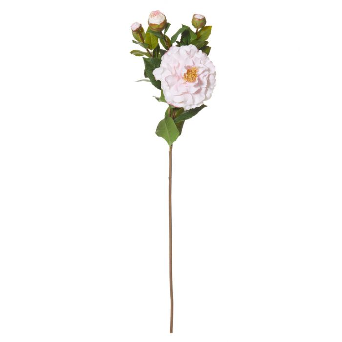Artificial Camellia Spray Pink  ] 9331460267629 - Flower Power