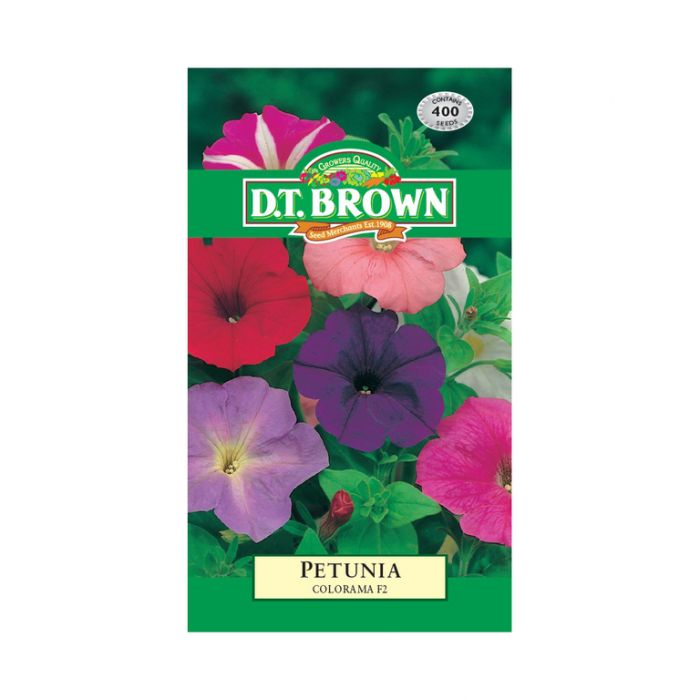 D T Brown - Flower Seeds - Petunia Colorama F2  5030075003663