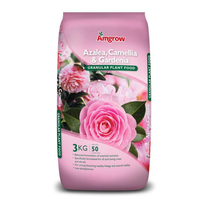 Amgrow Azalea, Camellia & Gardenia Granular Plant Food  9310943550250