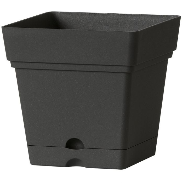 Deroma Quardo Samba Square Pot  726232260820