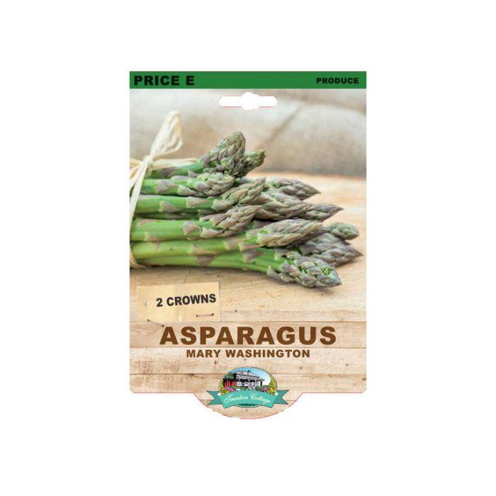 Asparagus Mary Washington  9315774071837