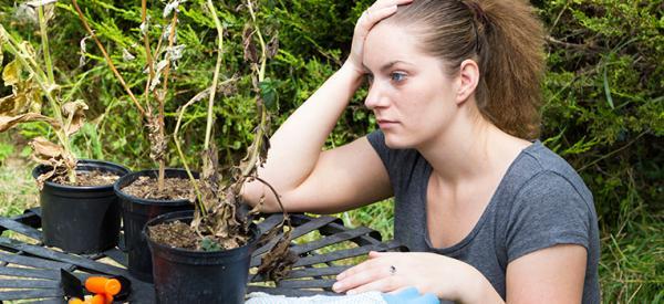 Easy Ways to Avoid 5 Common Gardening Mistakes