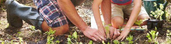 Choose your own gardening adventure this long weekend!