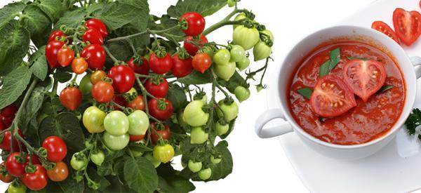 Heartbreaker Tomato