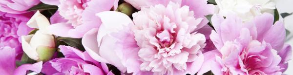 How to Keep Cut Flowers Lasting Longer