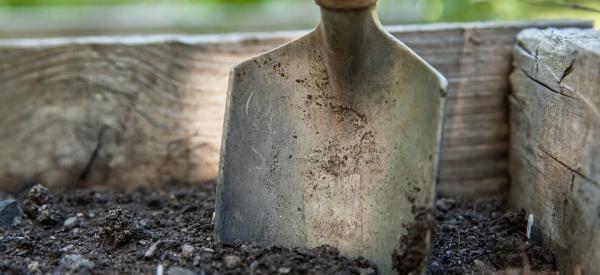 7 tools every gardener needs