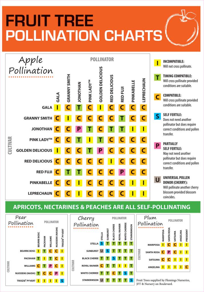 POLLINATION-CHART-2015-Final