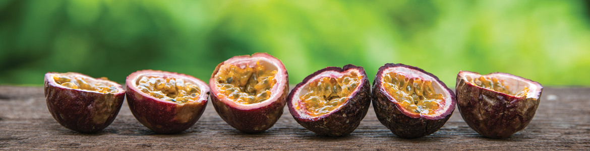 Top Tips for Growing Passionfruit
