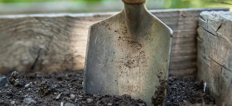 7 tools every gardener needs