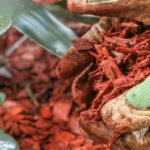 A guide to mulching