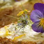 11 edible flowers