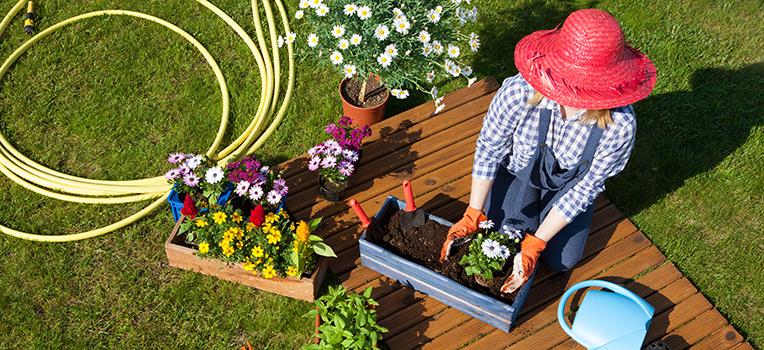 Gardening glossary