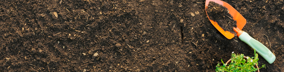 What is well-draining soil?