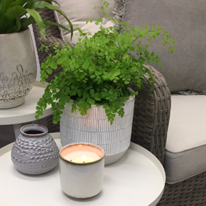 A lacy Maidenhair Fern in a natural-coloured Mali Planter pot, nestled comfortably on a side table next to a wicker lounge with a candle and vase.