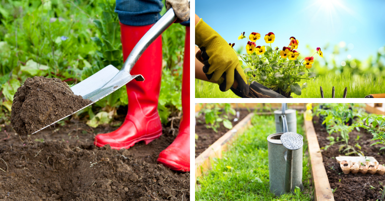 Clockwise from left: A person wearing red gumboots digging a vegetable patch with a shovel; a person planting colourful petunias in a sunny garden; a watering can between two garden beds.