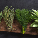 Our must-grow Elite Herbs for home chefs