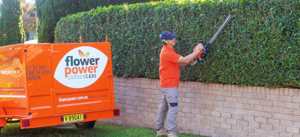A Flower Power Garden Care franchisee performing work on a client's hedge. His bright orange Flower Power Garden Care trailer is visible in the background.