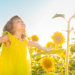 Gardening 101: Fun in the sun - exploring sun and light exposure needs