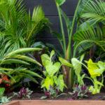 10 Garden Design Ideas For Small Gardens